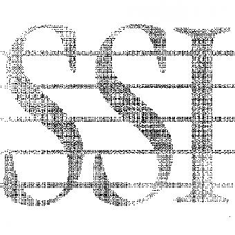 SSI Virtual Walking Group