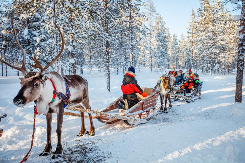 SSA's Lapland Adventure