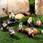 Aldo's Gnomes