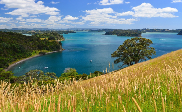 New Zealand (North Island)