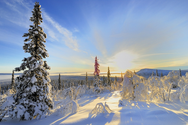 Lochfield Goes To Lapland