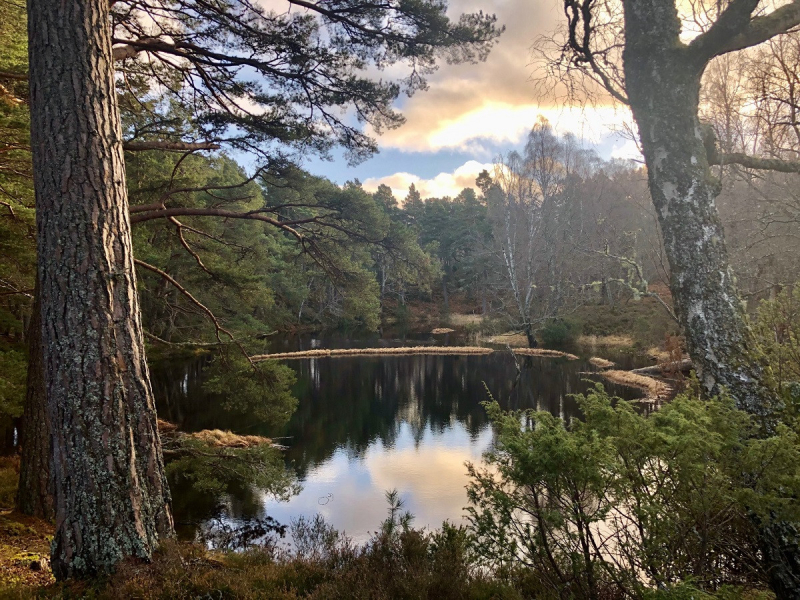Hike the Highlands from Home