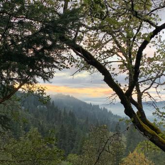 Southern Oregon Wandering