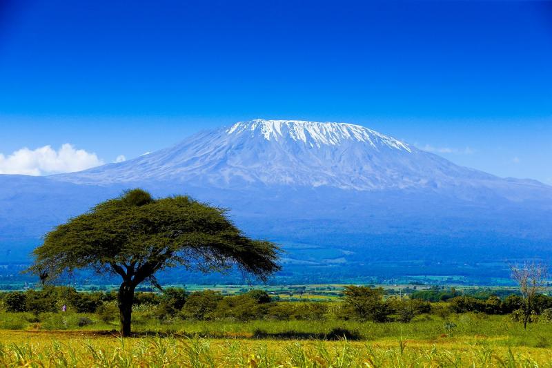 Tooting to Tanzania Trek
