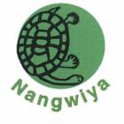 Nangwiya Turtles