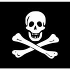 Pirates. Flying the Black Flag.
