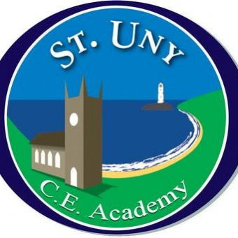 St Uny Steppers