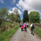 WALK IT - Ireland