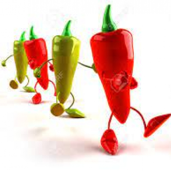 The Red Hot Chilli Steppers