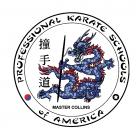 PKSA Karate Space Coast