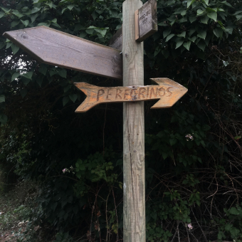 Camino Mayo a Junio