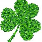 The Green Shamrocks
